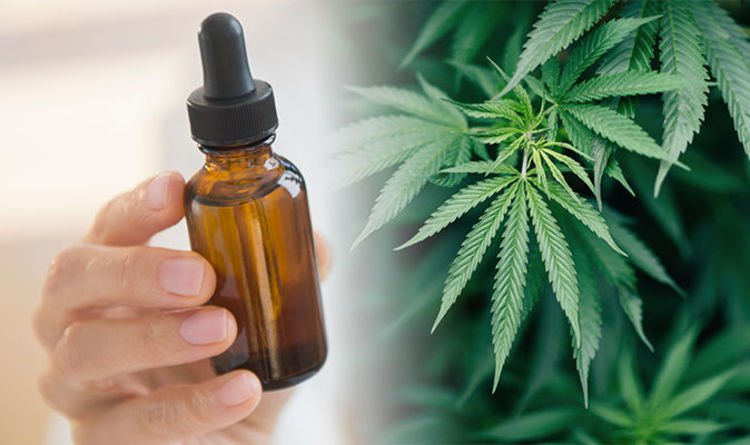 CBD oil: Six things you really need to know about the cannabis compound