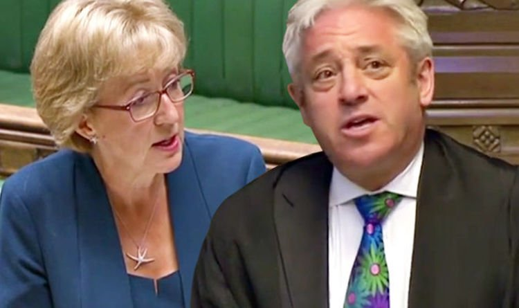 Breaking point for Bercow: Leadsom may demand action as speaker under fire