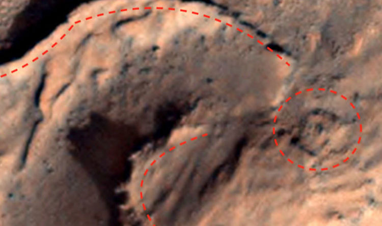 Life on Mars: 'ANCIENT city' on Red Planet is '100 percent proof' of aliens