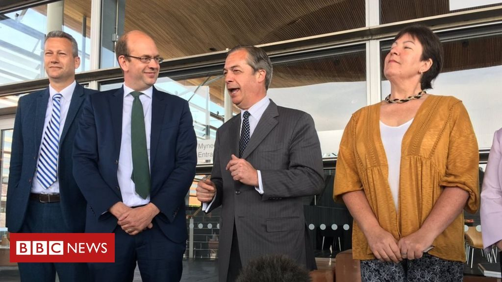 Plany grupy Brexit Party Welsh Assembly