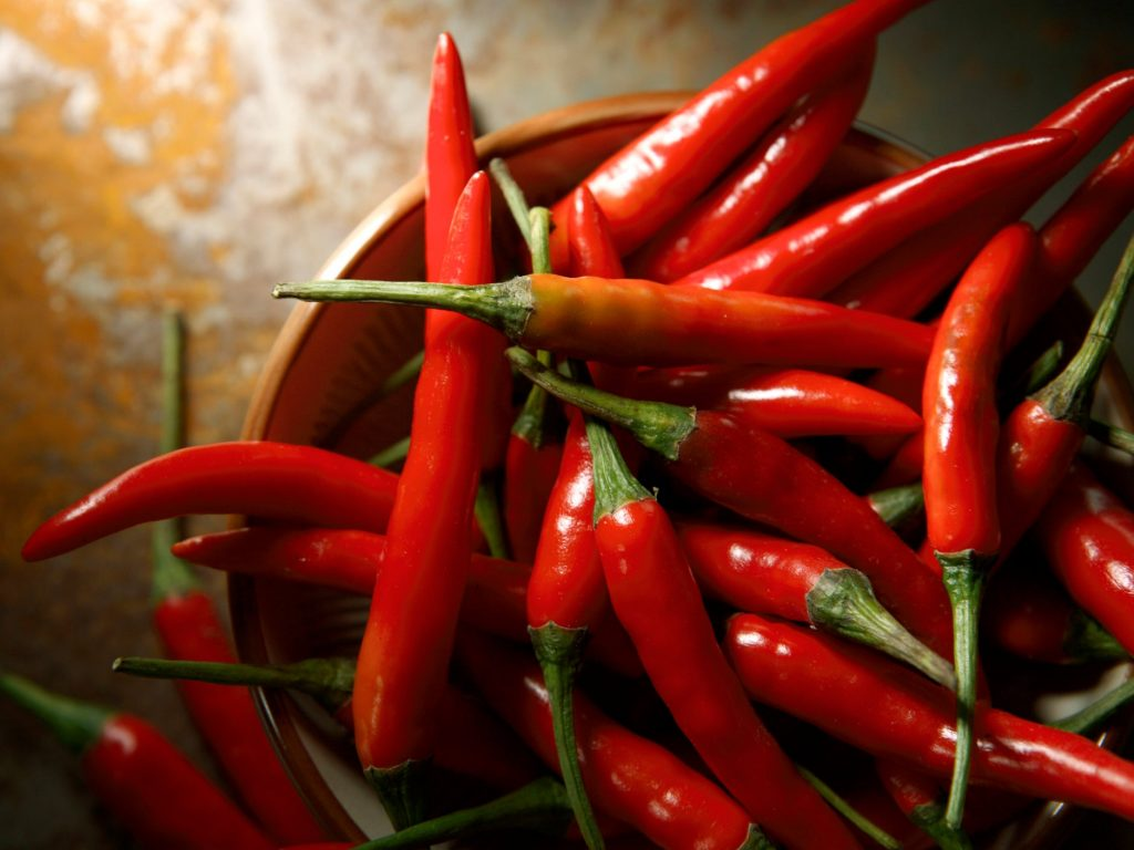 Alchemists searching for the elixir of life appear to have overlooked the humble chilli pepper